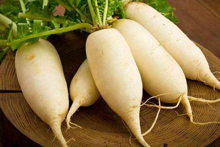 củ cải trắng là thực phẩm trị ho hiệu quả