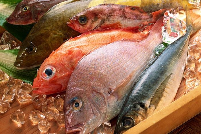 hải sản tươi sống giàu đạm
