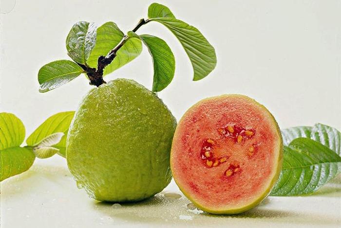ổi giàu vitamin C rất tốt cho làn da
