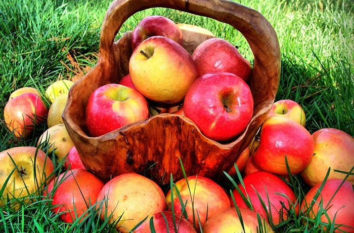 táo là thực phẩm giải độc gan hiệu quả
