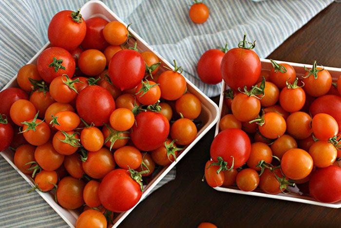 Kết quả hình ảnh cho bảo quản cà chua