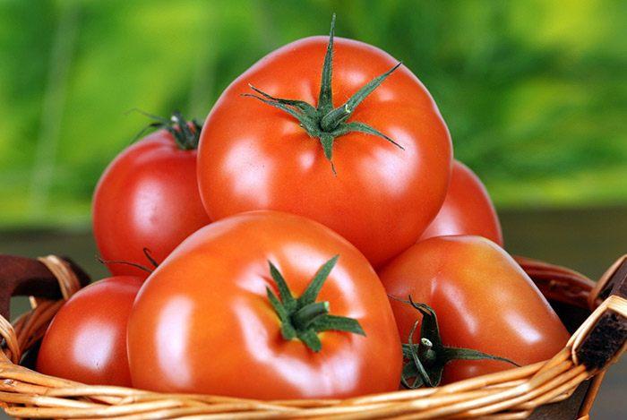 Cà chua chín