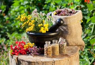 Công dụng tuyệt vời của thảo dược thiên nhiên