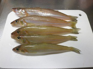 món đặc sản với cá lanh