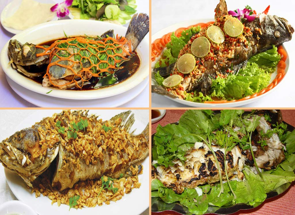 Cá mú loài cá giàu dinh dưỡng