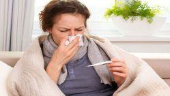 thảo dược trị cảm cúm