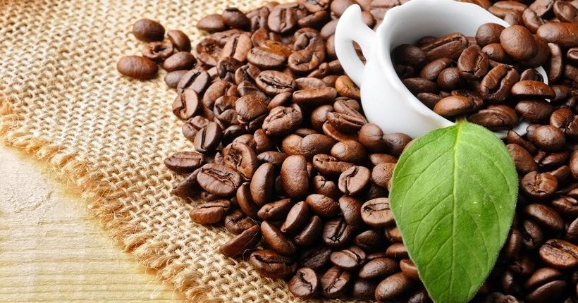 Hạt cà phê hạn chế hấp thụ chất béo
