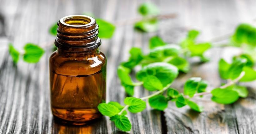 Tinh dầu bạc hà khử mùi tỏi cho hơi thở thơm tho