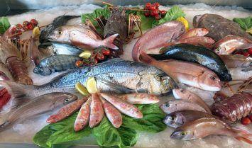 Lợi ích của cá