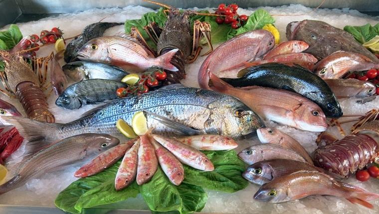 Lợi ích của cá – giá trị dinh dưỡng tuyệt vời từ cá cho sức khỏe