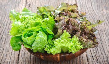 Lợi ích của rau xà lách