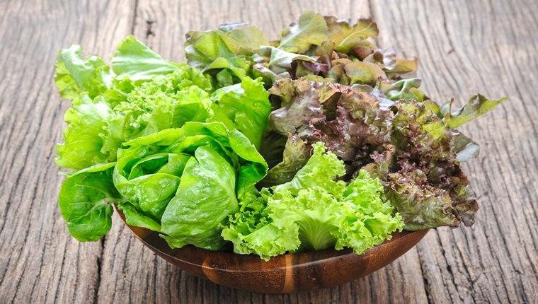 Top những lợi ích của rau xà lách đối với cơ thể bạn