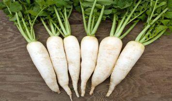 Tác dụng của củ cải trắng