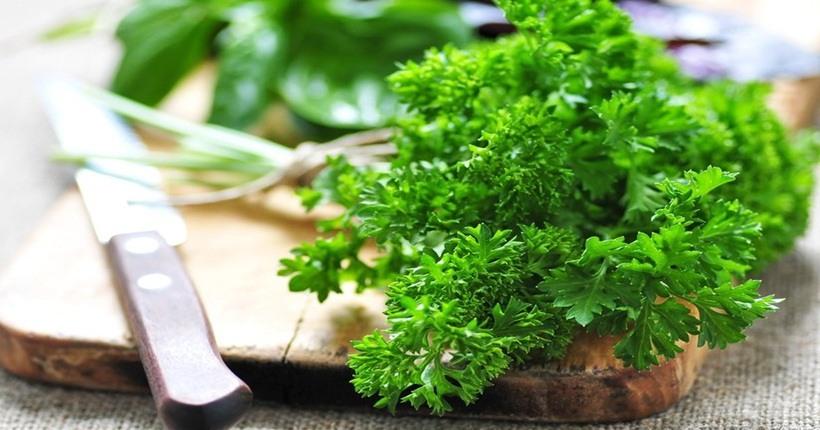 Thành phần dinh dưỡng của rau mùi tây