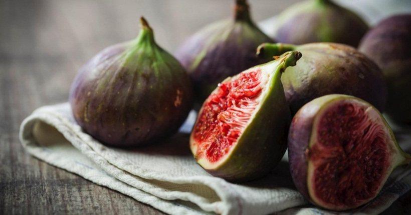 Quả sung – thức ăn phòng chống ung thư vòm họng kỳ diệu
