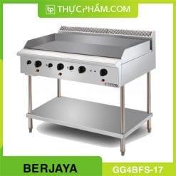 bep-chien-phang-4-hong-dung-gas-co-chan-dung-gg4bfs-17