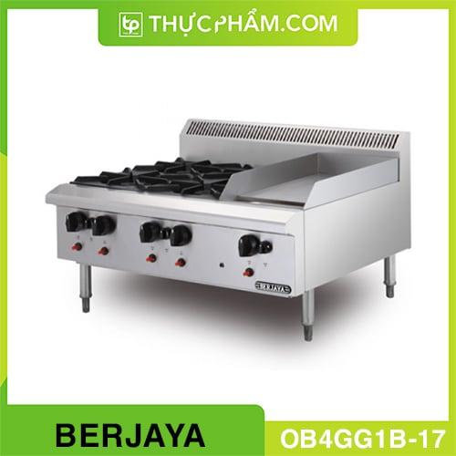 bep-au-4-hong-co-ran-phang-dung-gas-OB4GG1B-17