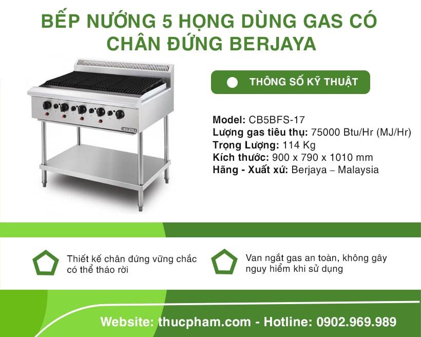 bep-nuong-5-hong-co-chan-dung-gas-Berjaya-CB5BFS-17