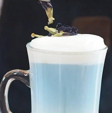 latte hoa dau biec 1