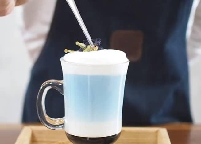 latte hoa đậu biếc